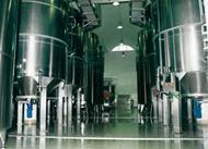 ceptune: production, vin, luxe, vin blanc, vin rosé, vin rouge, tunisie