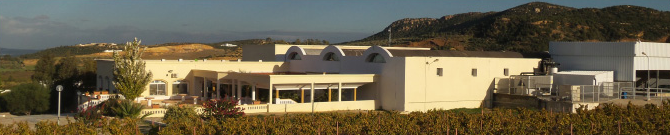 Alkimia, Grombalia, vin blanc, vin rosé, vin rouge, vente, en ligne, production, tunisie